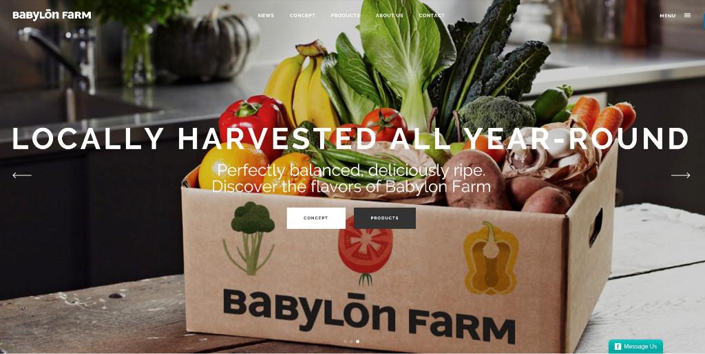 Babylon-Farm-NYC